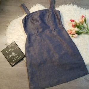 Ann Taylor Loft Sz 4P Denim Fully lined Dress